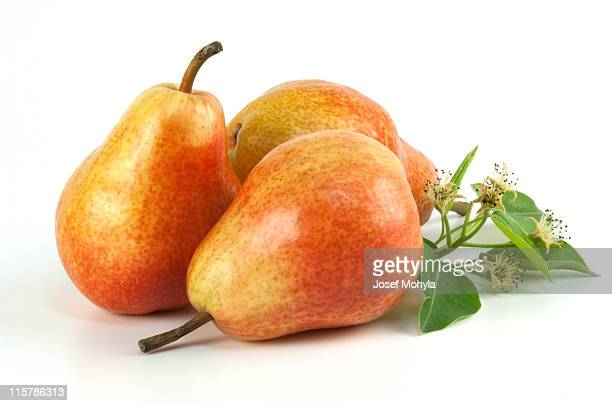 Three pears on white