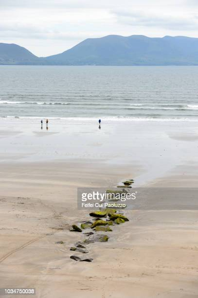 three people enjoying at beach at inch, kerry county, ireland - inch stock pictures, royalty-free photos & images
