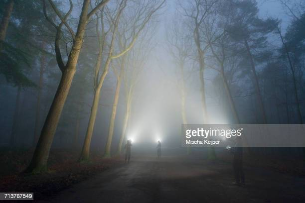 Three people shining lights, Illuminating the woods in heavy fog