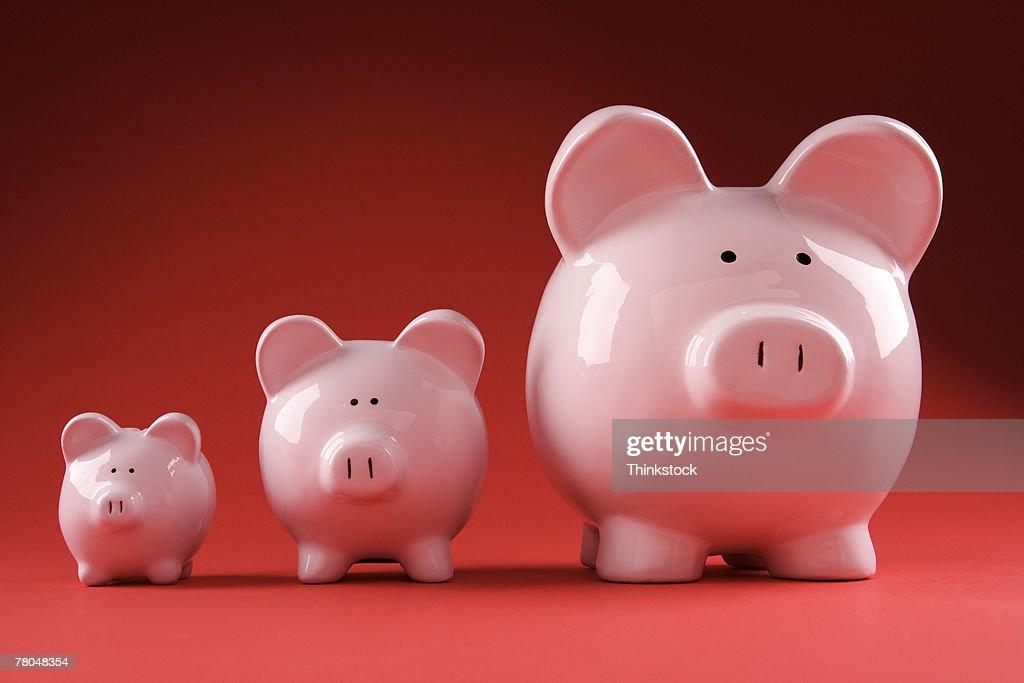 Three piggy banks : Stock Photo