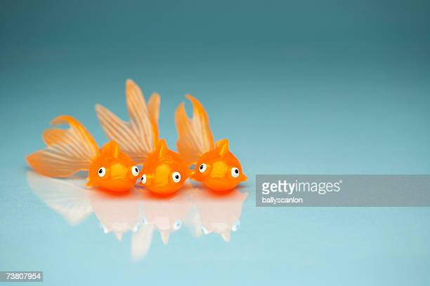 Three plastic orange toy fish on blue background
