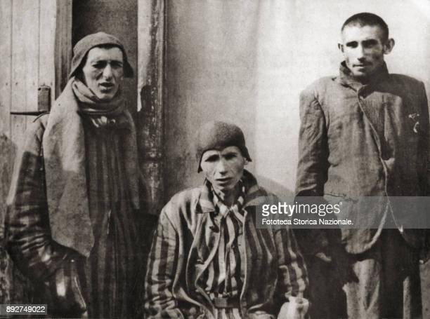 Three prisoners of an undefined extermination camp portrayed after the arrival of the allies Germany 1945