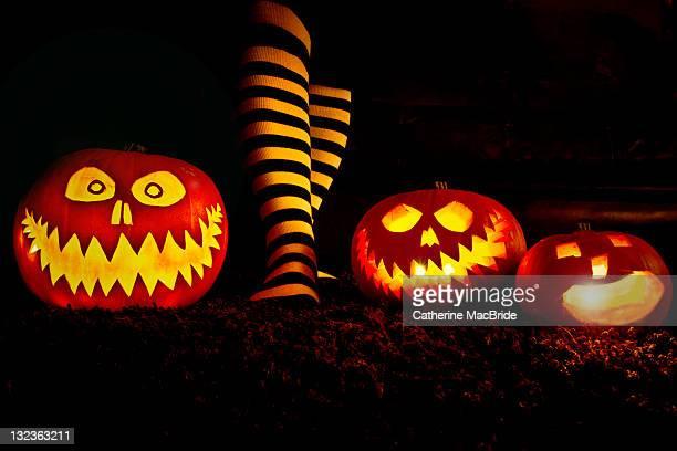 three pumpkins and stripey socks - catherine macbride stock-fotos und bilder