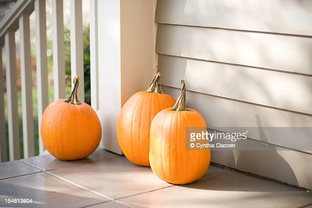 Three Pumpkins, Mottled Light
