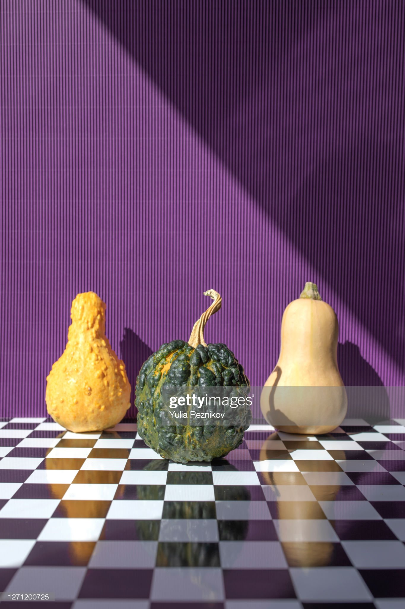 Three pumpkins (crookneck, butternut and black futsu squash) on the purple background : 圖庫照片