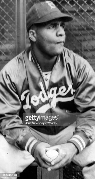 Three quarter length portrait of baseball player Roy Campanella wearing a Dodger's jacket and cap, May 1, 1951.