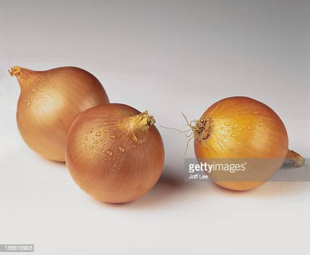 three raw brown onions - cebola - fotografias e filmes do acervo