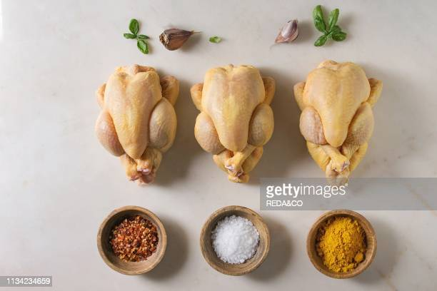 Three raw organic uncooked whole yellow corn mini chicken in row with salt turmeric powder red hot chili pepper basil garlic over marble background...