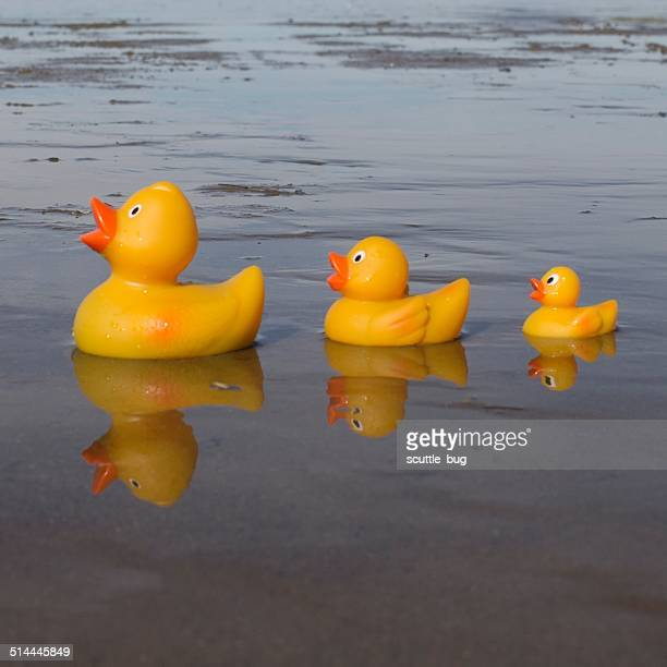 Three rubber ducks on beach