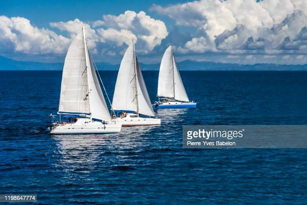 three sailboats racing - sports race stock pictures, royalty-free photos & images