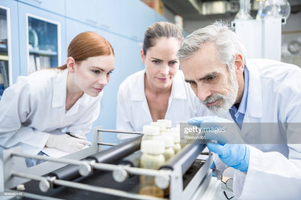 Three scientists in lab examining samples : Stock-Foto