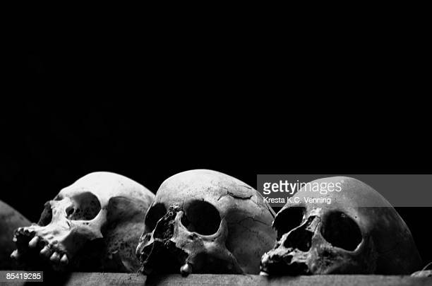 three skulls at nyamata genocide memorial, rwanda - genocide stock pictures, royalty-free photos & images