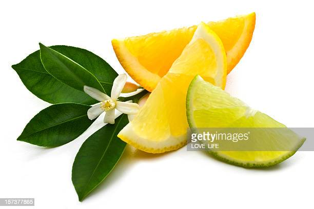 three slices of lemons and lime - citrus fruit stock pictures, royalty-free photos & images