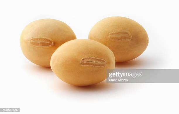 Three soya beans on white background