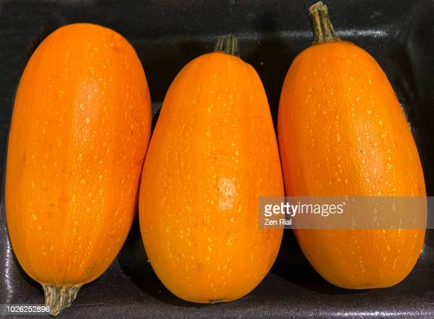 three spaghetti squash- cucurbita pepo - side by side on black background - zen rial stock photos and pictures