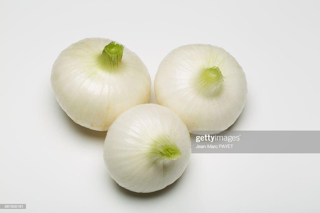 Three spring onion isolated on white background : Photo