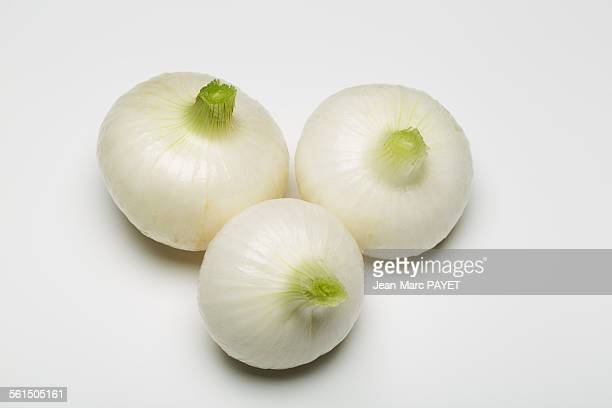 Three spring onion isolated on white background