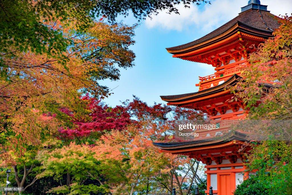 Three Storey Red Pagoda at Kiyomizu-dera Temple, Kyoto, Japan in Autumn : Stock-Foto