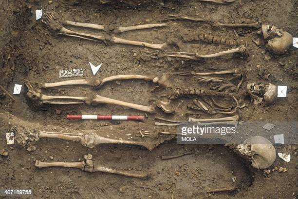 Three supine extended burials from the excavation of the Black Death cemetery East Smithfield London