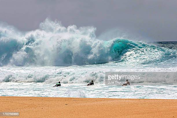 three surfers heading out to the monster waves - banzai pipeline stock photos and pictures