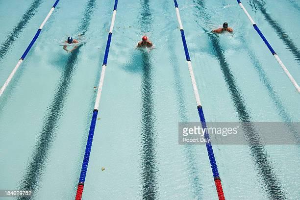 Trois nageurs à nager dans une piscine.