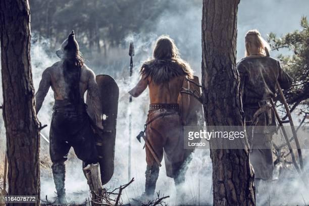 drei schwert schwingen blutige wikinger krieger in einem wald - wikinger stock-fotos und bilder