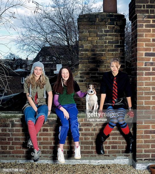 Three teenage girls (16-18) sitting on wall with dog, portrait