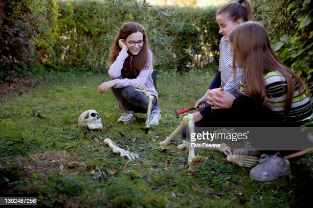 three teenagers assembling skeleton replica halloween decoration in grass on a front yard - 12 17 months stock pictures, royalty-free photos & images