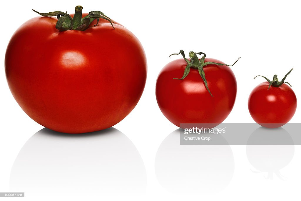 Three tomatoes of different sizes : Stock Photo