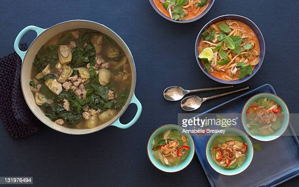 Three Types of Chicken Soup in Large Pot and Bowls
