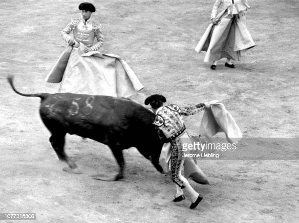 Three unidentified Matadors in the bullring swing their capote capes at a charging bull Plaza de Toros de La Malagueta Malaga Spain 1966