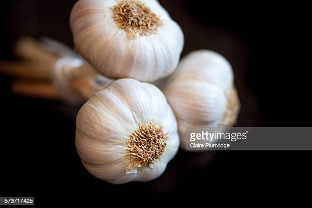 three whole garlics - claire plumridge stock pictures, royalty-free photos & images