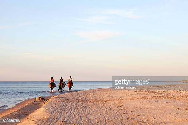three women horseback riding on beach - faro sweden stock pictures, royalty-free photos & images