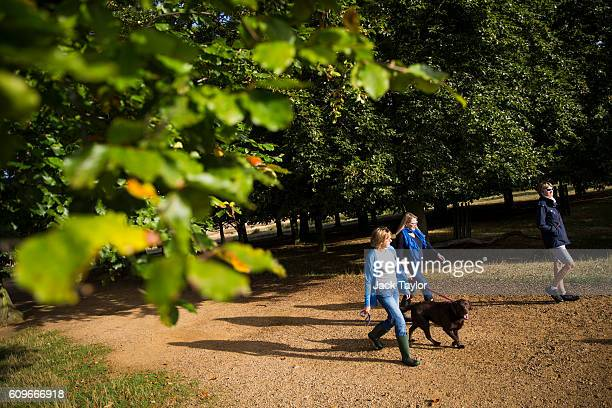 Three women walk with a dog in Richmond Park on September 22 2016 in London England Today marks the first day of autumn also known as the autumn...