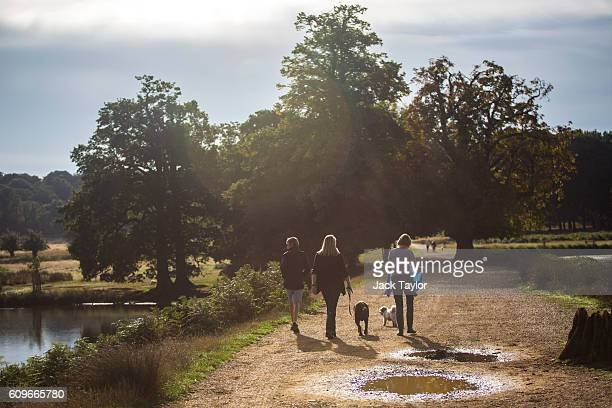 Three women walk with their dogs in Richmond Park on September 22 2016 in London England Today marks the first day of autumn also known as the autumn...