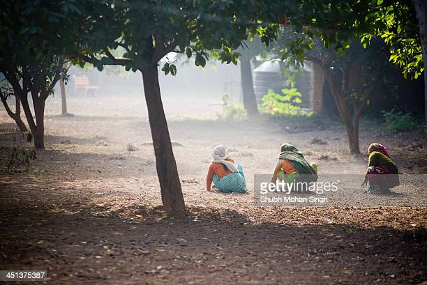 Three women Working away at clearing a garden of weeds on a foggy winter morning in Chandigarh.