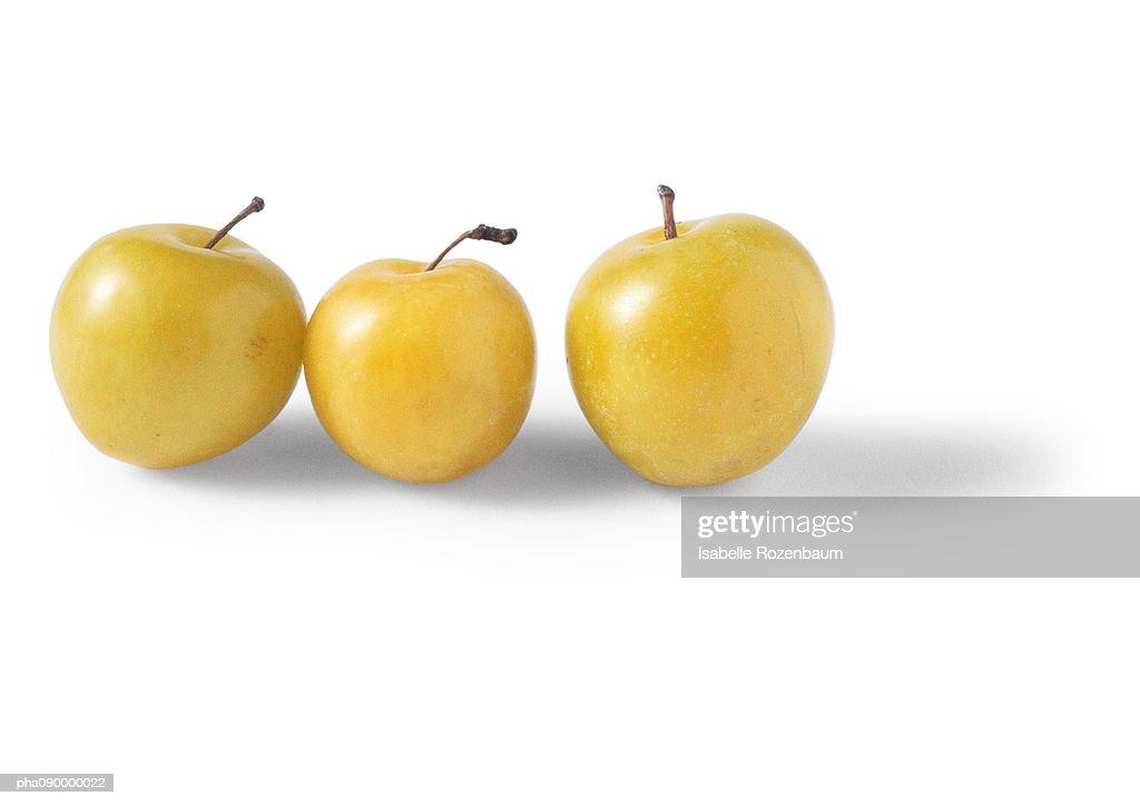 Three yellow plums, white background : Stockfoto