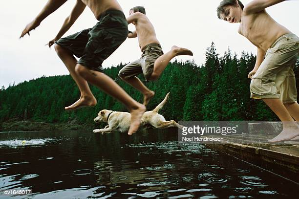 Three Young Boys Jump Into a Lake by a Forest With Their Pet Dog
