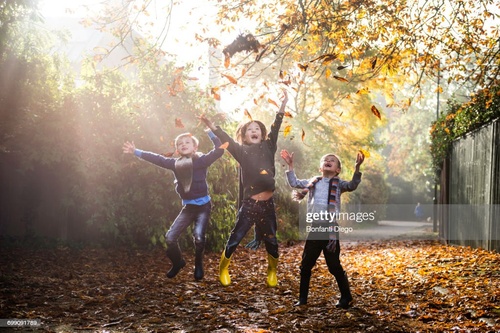 Three young boys, playing outdoors, throwing autumn leaves : Stock Photo