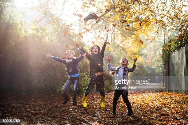 three young boys, playing outdoors, throwing autumn leaves - young leafs stock photos and pictures