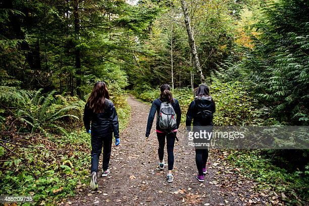 Three young female hikers walking through wood, Squamish, British Columbia, Canada