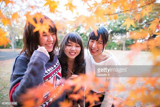 Three young girls playing in autumn leaves