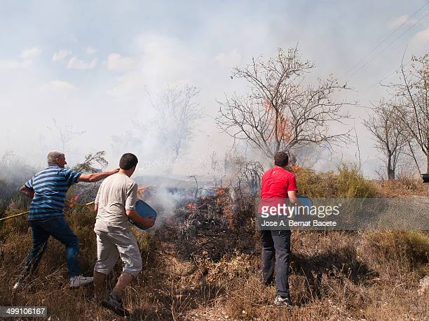 Three young men extinguishing with buckets of water and a hose a forest fire that makes be in danger his houses that are to scanty meters to another...