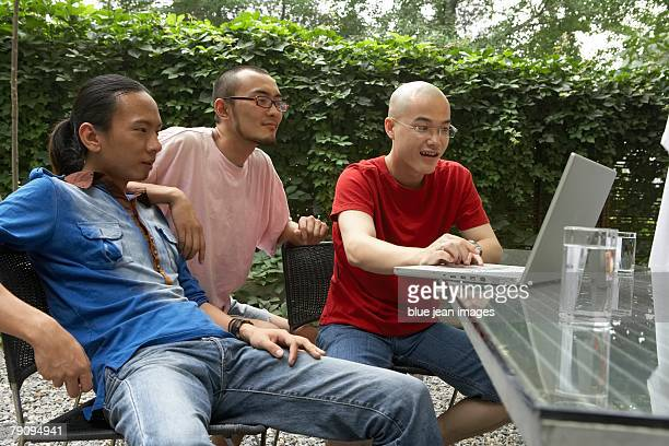 Three young men using a laptop in the garden.