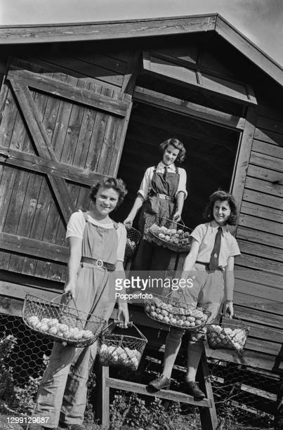 Three young women from the Women's Land Army hold baskets full of freshly laid eggs at a chicken farm in Surrey, England during World War II on 27th...