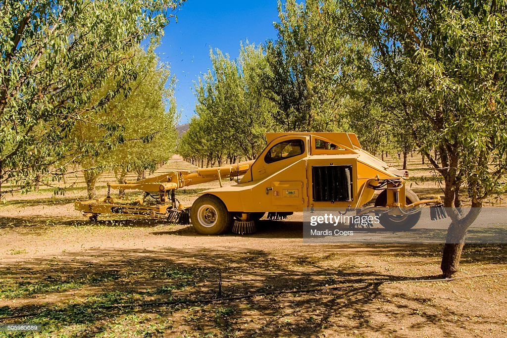 Three-wheel Nut Harvester or