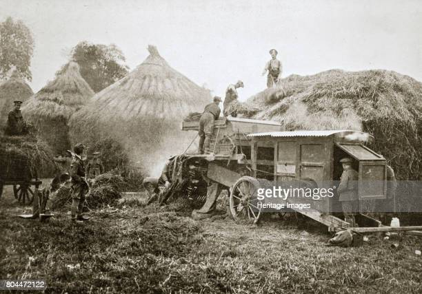 Threshing for straw for soldiers' use France World War I 1916 During the Somme Offensive of JulyNovember 1916 Artist Unknown
