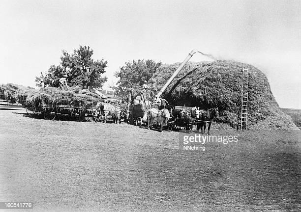 threshing, retro - threshing stock photos and pictures