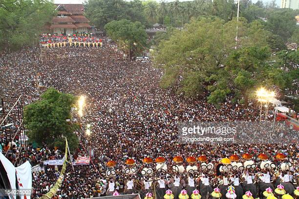 thrissur pooram - kerala elephants stock pictures, royalty-free photos & images