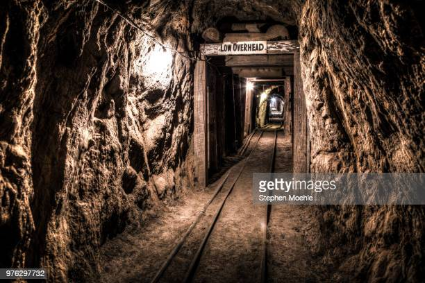 through the gold mine - gold mining stock photos and pictures